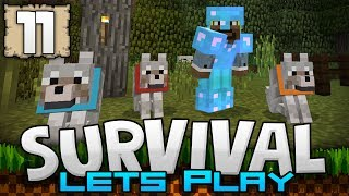 Our eleventh episode is definitely a good one! I hope you guys enjoy! Be sure to leave your suggestions in the comment section below, I'll be relying heavily on you guys and gals to guide this series to greatness!Map:http://justmcpe.com/post/view_post?vid=1&&pid=441Seed:http://justmcpe.com/post/view_post?vid=1&&pid=419========================================Bio:Hey I'm Jack, and I record Minecraft Pocket Edition aka Minecraft PE aka MCPE! XD Welcome to my description! I love to play all sorts of games, so you will often see many other types of games as well! Glad you stopped by! Check the channel for more :)Check the links below to support me:Please Follow Me On Twitter:https://twitter.com/JackFrostMinerLike My Facebook Page:https://www.facebook.com/JFMYT/Follow Me on Instagram:https://www.instagram.com/jfmyt/========================================Music By Kevin MacLeod and C418========================================