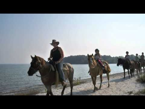 Diamond J. Ranch, Horseback Riding, Picton, Ontario, Canada