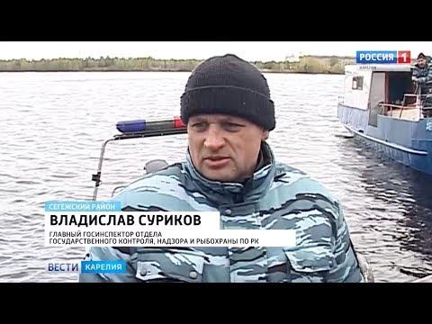 20 рыболовных сетей вытащили сегодня из воды в Сегежском районе