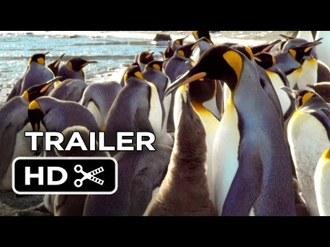 Adventures of the Penguin King (Official Trailer)