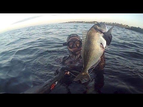 Pesca Sub: prima di Luglio con oratona 1,800 kg, 01/07/2014