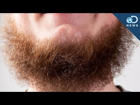 Sexy - Studies have shown that beards equate to age, masculinity and dominance. Society has decided that facial hair is considered