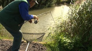 Things go wrong in this video... one particular thing is when Graeme's fishing rod snaps in half whilst still fighting a catfish! But being the trooper that he is, Graeme continues to battle on through the stormy wind and rain, determined to land as many catfish as he can. It's an epic!► Download our Free Digital Fishing Magazine: http://www.awesomeangler.co.uk► Become a Patron for monthly Q&A and Behind the Scenes: https://www.patreon.com/totallyawesomefishing?ty=h► Check out the Salt Life YouTube Channel: https://www.youtube.com/c/saltlife▬▬▬▬▬▬▬ FOLLOW US ▬▬▬▬▬▬▬• Instagram → https://www.instagram.com/tafishingofficial/• Facebook → https://www.facebook.com/totallyawesomefishing• Snapchat → tafishing• Twitter → https://twitter.com/tafishing• Our website & DVDS → http://www.totallyawesomefishing.com• Google+ → https://plus.google.com/+TAFishing/posts▬▬▬▬▬▬▬ FILMING GEAR WE USE ▬▬▬▬▬▬▬Main Camera - SonySecondary Camera - http://amzn.to/2jXo3C0DSLR Camera - http://amzn.to/2bXaO1YLaptop Editing Computer - http://amzn.to/2g4LMd4GoPro Chest Mount - http://amzn.to/2cjvTBLGoPro Head Mount - http://amzn.to/2bXdwo4Drone - http://amzn.to/2bXd0GIMike's Camera Microphone - http://amzn.to/2bThNbbThese are Amazon associate links ▬▬▬▬▬▬▬ TAF CLOTHING & MERCH ▬▬▬▬▬▬▬UK Clothing Store → http://totallyawesomefishing.spreadshirt.co.uk/Europe Clothing    → http://totallyawesomefishing-eu.spreadshirt.net/US Clothing Store → http://totallyawesomefishing.spreadshirt.com/▬▬▬▬▬▬▬ FISHING PLAYLISTS ▬▬▬▬▬▬▬SEA FISHING: https://www.youtube.com/playlist?list=PLlJDPmb6OexrDnAFNBNJez8zRe4EECDZYBEACH FISHING: https://www.youtube.com/playlist?list=PLlJDPmb6OexpRHtX7Wp_3lDa6hAmChIuhCARP FISHING: https://www.youtube.com/playlist?list=PLlJDPmb6OexrY3ZHJk6KIAva6yZgyL9NoFLY FISHING: https://www.youtube.com/playlist?list=PLB995E0AF38A6353FPIKE, PERCH & ZANDER: https://www.youtube.com/playlist?list=PLlJDPmb6Oexpa4bpAxjX6ptu_dgIx3PRWRIVER FISHING: https://www.youtube.com/playlist?list=PLlJDPmb6OexpWpfhuuF