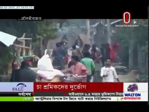 Tea garden workers suffer in cold (06-02-2016)