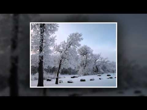 Tekst piosenki Sarah McLachlan - Christmas time is here  feat. Diana Krall po polsku
