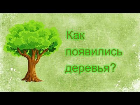 Как появились первые деревья | Первое дерево на Земле. Первые деревья. Откуда появилось  дерево - DomaVideo.Ru