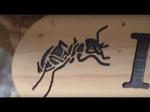 Rostock: Zoo Rostock - Insektenhotel mit Unterstützung  ...