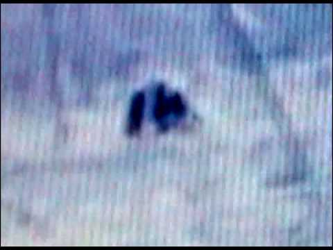 Gables Film Part 4 of 4 caught on video bigfoot video 