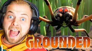 HONEY I SHRUNK THE SQUID!! - GROUNDED #1