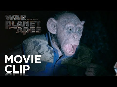 War for the Planet of the Apes Clip 'Bad Ape and Maurice'