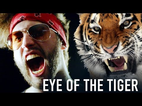 """Survivor  """"Eye of The Tiger"""" Cover by Jonathan Young"""