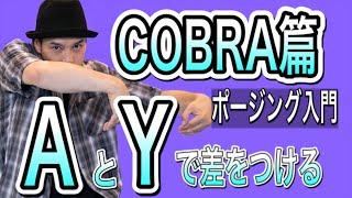 MST – 【ポージング入門】COBRA篇 AとYのスタイリング / poppin animation 入門