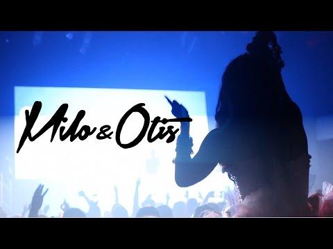 InStereo ft Milo & Otis Aftermovie