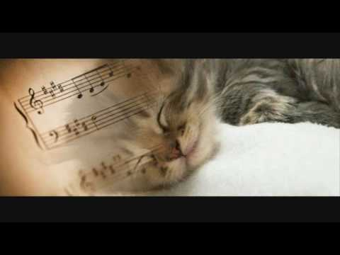 The Classical Music For Reading: Nocturne In Eb Major, Op. 9, No. 2