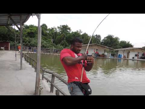 Ls Fishing Pond Fight 120kg Naga 0123236767