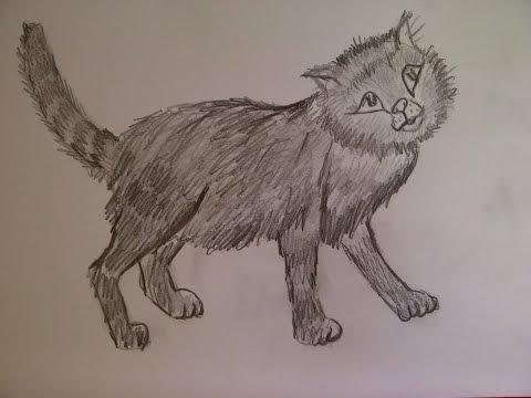 Zeichnen lernen für Anfänger. Katze malen. Ein Katzenporträt