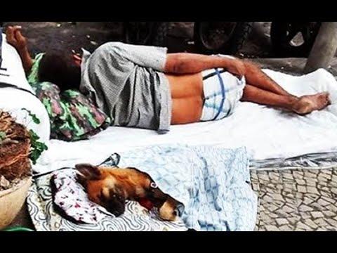 Imagenes bonitas de amor - ¡Las imágenes más hermosas del mundo¡ (Perros y vagabundos) MORIRAS DE TERNURA