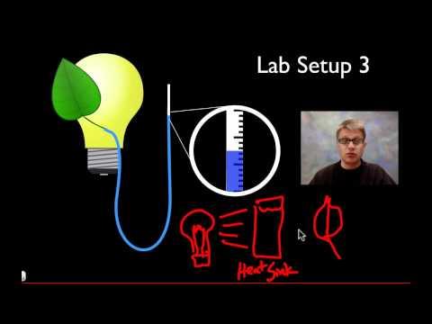 biology coursework transpiration