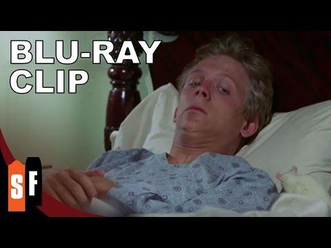 Willard (1971) - Clip 2: Ben (HD)