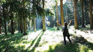 Video Svätoslav Hamaliar - Rozdelení bratia