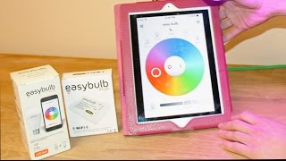 Easybulb Plus Review by New Day Videos
