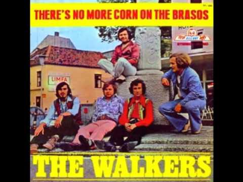 Tekst piosenki The Walkers - The Cotton Song po polsku