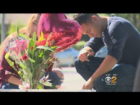 4 Killed When Speeding BMW Slams Into Tree, Erupts In Flames In Northridge
