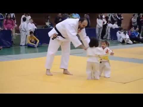 cười đau bụng với trận đấu Judo  cu 2 em bé