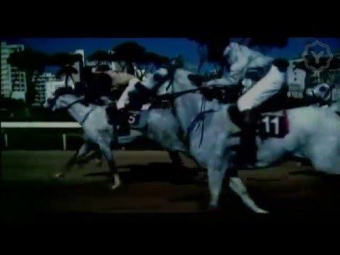 Elissa - Kol Youm Fi Omri (Official Clip) / إليسا - كل يوم في عمري (видео)