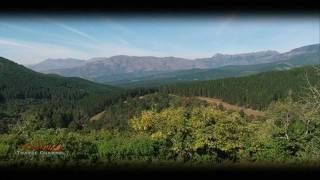 Tzaneen South Africa  city photos : Granny Dots Country Spot Accommodation Tzaneen South Africa - Visit Africa Travel Channel