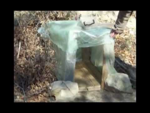 Here is the video about Rudozem Street Dog Rescue