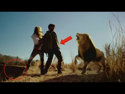ZOO Movie Mistakes, Bloopers, Spoiler, Goofs, Facts and Fails You Missed
