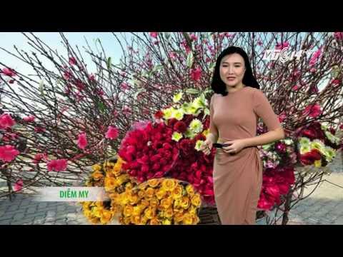 (VTC14)_Thời tiết 6h ngày 26.01.2017