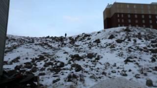 Kikkukiaq Inuktitut