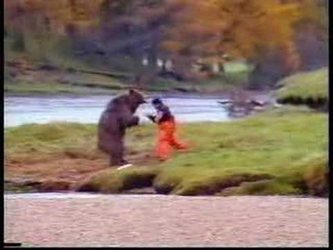 Peleando con un oso