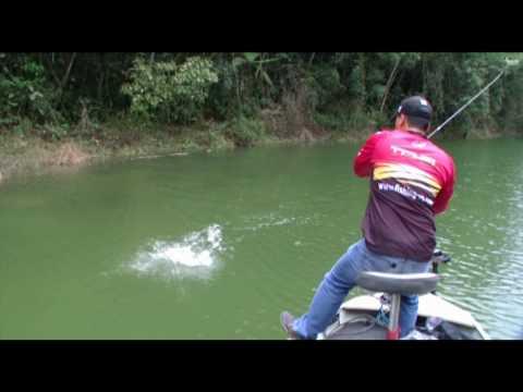 Pesca Humor