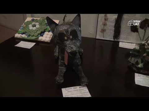 video-FICWCuZ8AnU