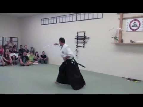 Seibukan Jujutsu Jon Rodriguez Shihan – Nanadan