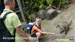 Kuranda Self Drive Cairns Tours