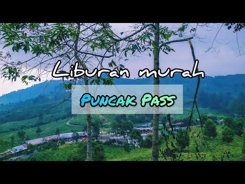 Puncak pass bogor destinasi liburan murah #puncakpass #kebunteh #bogor