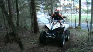 5. CAN-AM Renegade 500 EFI 2011