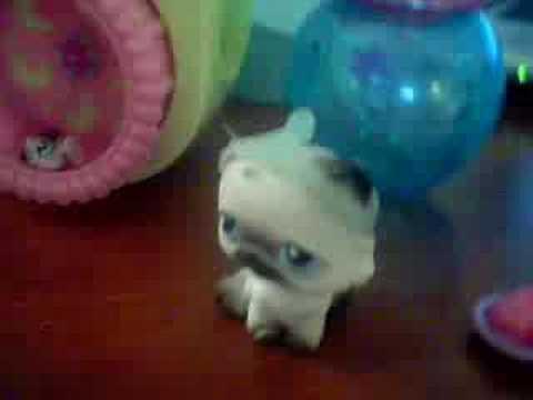 littlest pet shop (new baby)