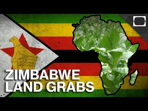 Why Are White Farmers Losing Their Land In Zimbabwe?