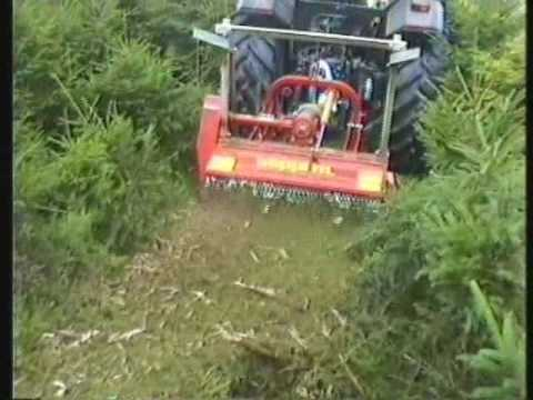 SEPPI M. - MINIFORST - Forestry mulcher for small to medium tractors - The strong forestry mulcher