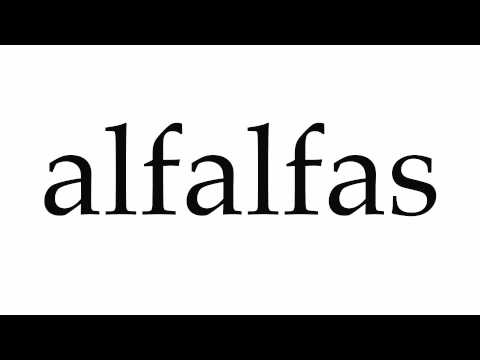 How to Pronounce alfalfas