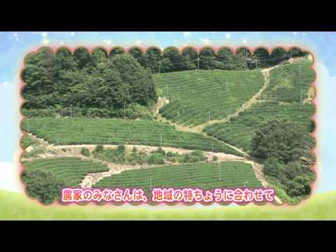 「食べることで、びわ湖を守る。」豊かな滋賀の豊かな農業 ~農業のさかんな地域を知ろう~