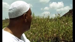 Mohammed Awol Salah NEW Neshida | መሀመድ አወል ሳላህ |