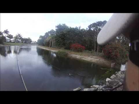 Fly Fishing Florida 2014