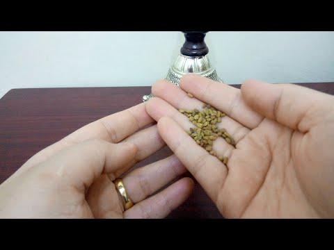 العرب اليوم - شاهد :فوائد البذور لطرد السموم من الجسم