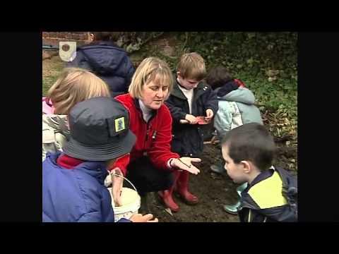 Lernen mit 'Mini-Biester ' - Unterstützung Children  's Learning in den frühen Jahren (1/3)